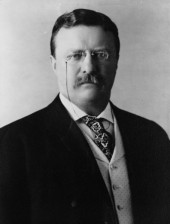 Make Theodore Roosevelt Picture Quote