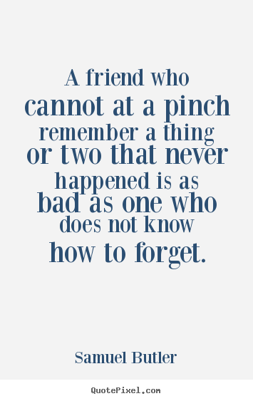 Quotes about friendship - A friend who cannot at a pinch remember a thing or two that never happened..
