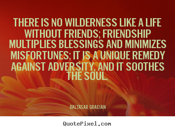 Quotes about friendship - There is no wilderness like a life without friends; friendship multiplies..