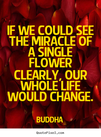 If we could see the miracle of a single flower clearly, our whole.. Buddha best life quotes