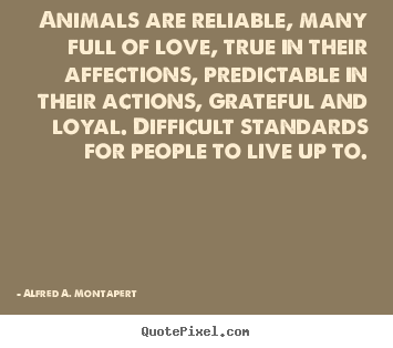 Love quote - Animals are reliable, many full of love, true..