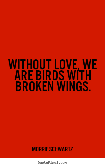 Customize picture quotes about love - Without love, we are birds with broken wings.