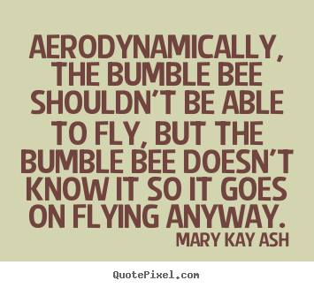 Mary Kay Ash photo quote - Aerodynamically, the bumble bee shouldn't be able to.. - Motivational quotes